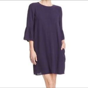 NWT Eileen Fisher Silk Georgette Crepe Shift